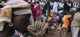 NIGER: Le Syndicat des commerçants en colère contre le Groupe Bolloré