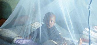 SANTÉ: Le Burkina découvre le premier vaccin contre le paludisme